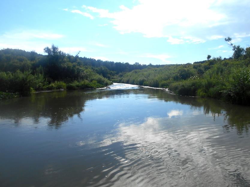 река Бердь в Петенях