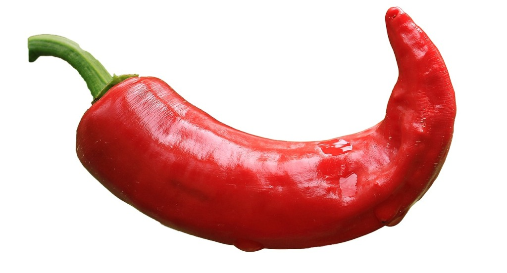 красный перец гибрид хаттабыч