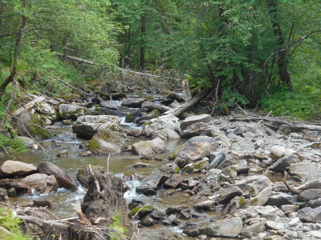 Река Ойрок.